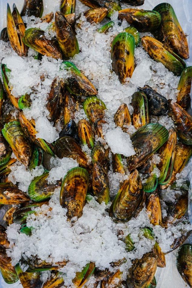 NZ Greenlip Mussels